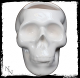 GOTHIC COLLECTION - White Skull Pen Holder 12.5cm - držiak na perá