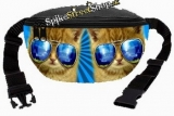 Ľadvinka CAT COLLECTION - Blue Glasses Cat
