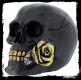 GOTHIC COLLECTION - Black Rose from the Dead 15cm - lebka