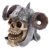 GOTHIC COLLECTION - Skull with Twisted Horn Viking Helmet - lebka