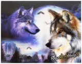 WOLF COLLECTION - Moonlight Wolf - 3D plagát