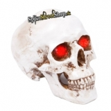 GOTHIC COLLECTION - Headlight 19cm White - lampa