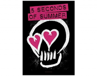 5 SECONDS OF SUMMER - Pink Skull - vlajka