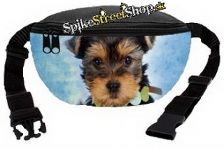 Ľadvinka DOGS COLLECTION - Yorkshire Head