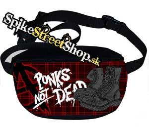 Ľadvinka ANARCHY + PUNKS NOT DEAD + BOTY